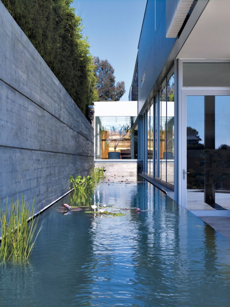 Modern Reflecting Pool - Luxe Interiors + Design