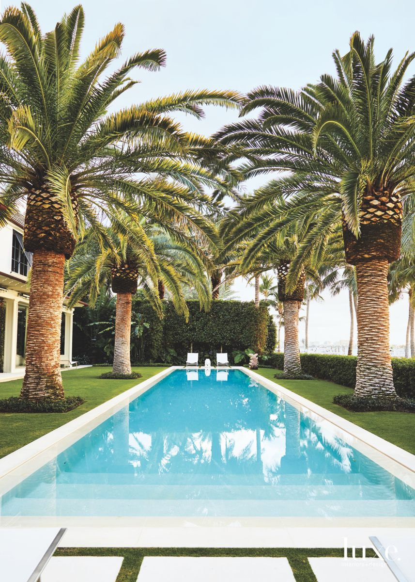 Palm Tree Lined Swimming Pool Landscape with Water Views