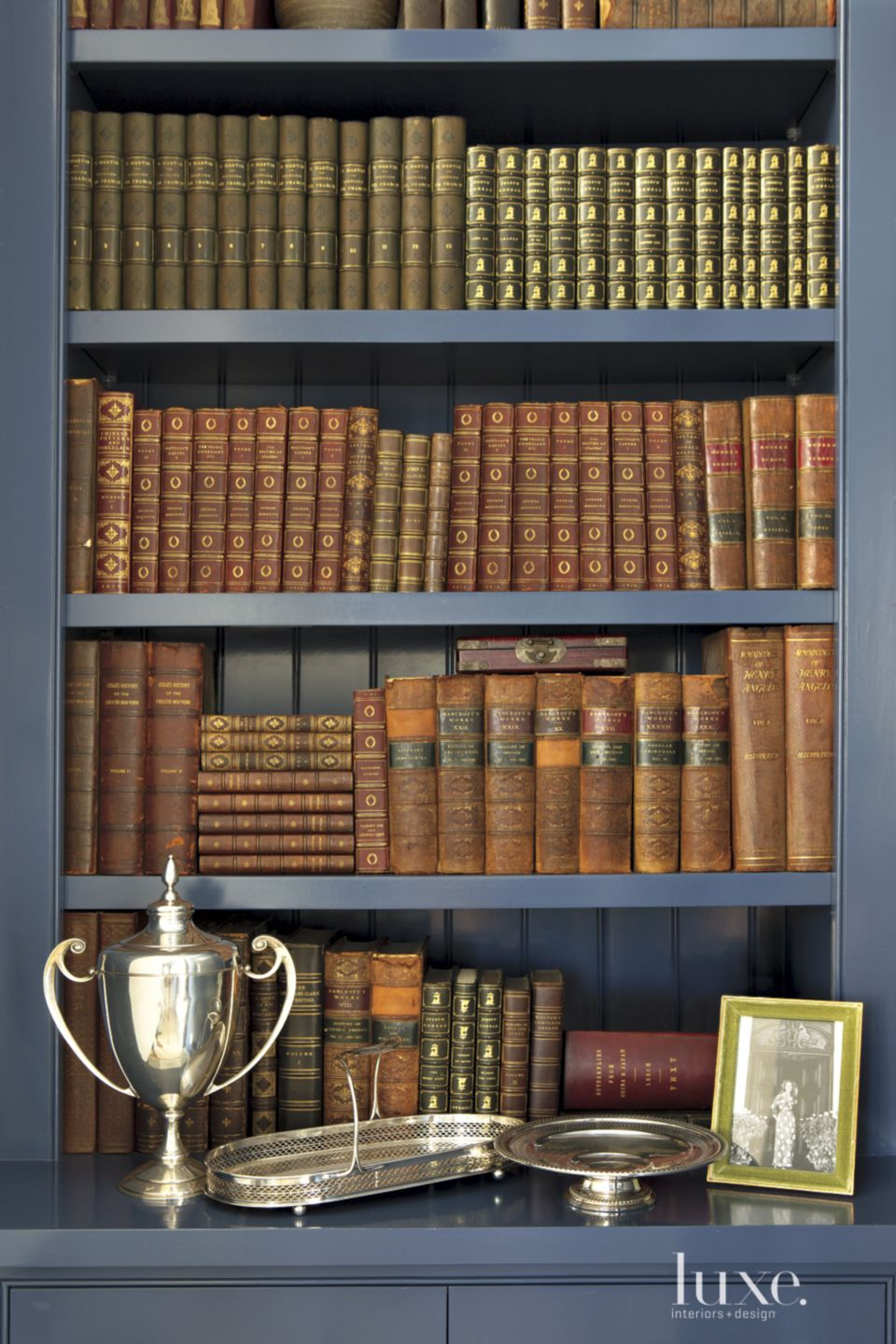 Contemporary Blue Library Shelves
