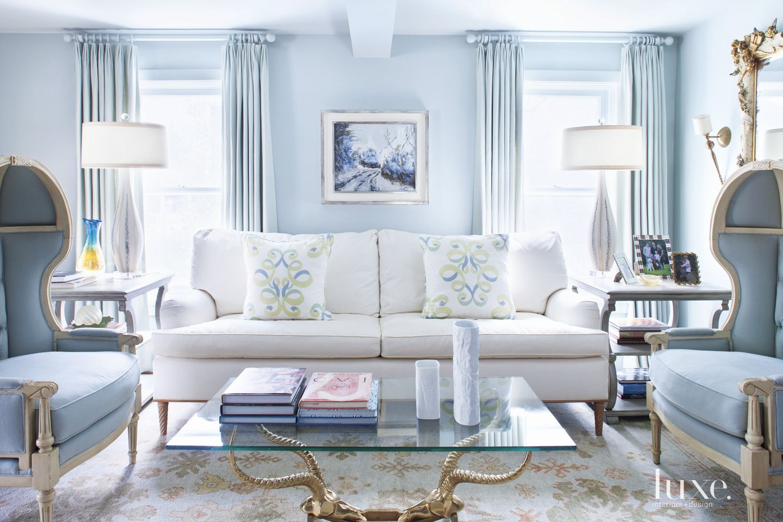 Calm Blue Living Room with Traditional Decor