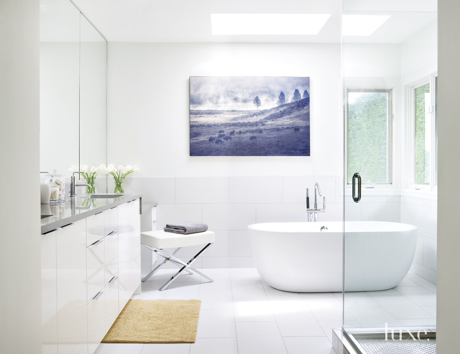 Modern White Bathroom with Bison Photography