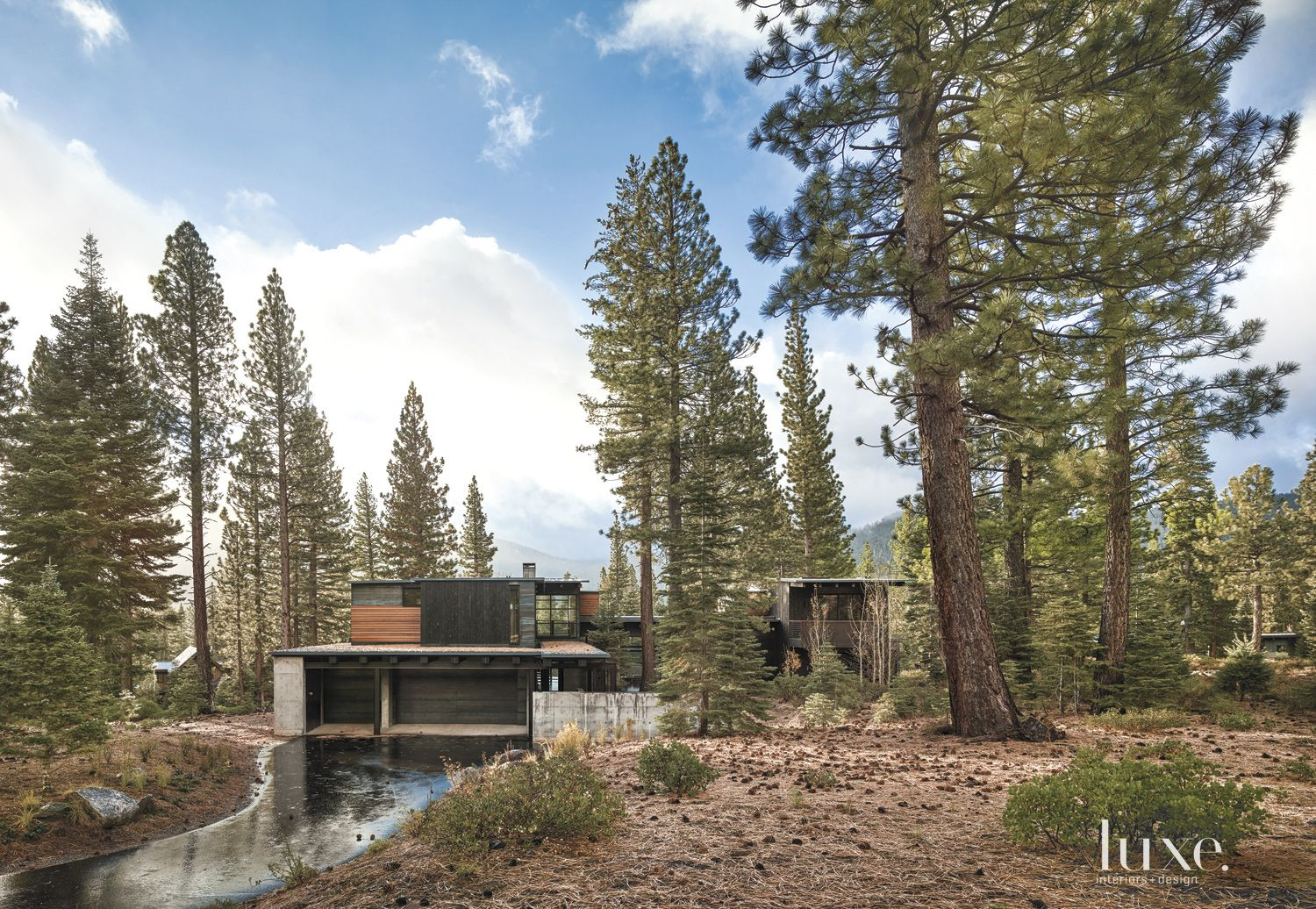 Contemporary Neutral Exterior with Pine Trees