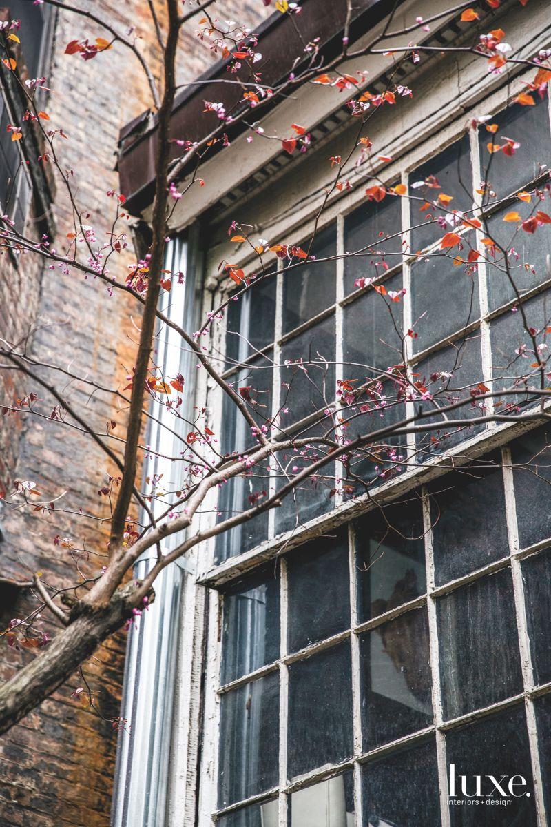 Tree and Brick Exterior with Garden Level Windows